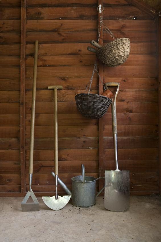 Inside a wooden shed containing gardening equipment